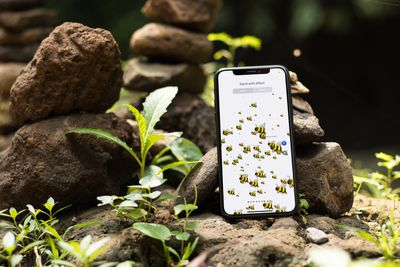 An iPhone in nature covered with bees