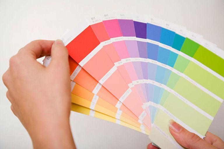 Person holding color guides