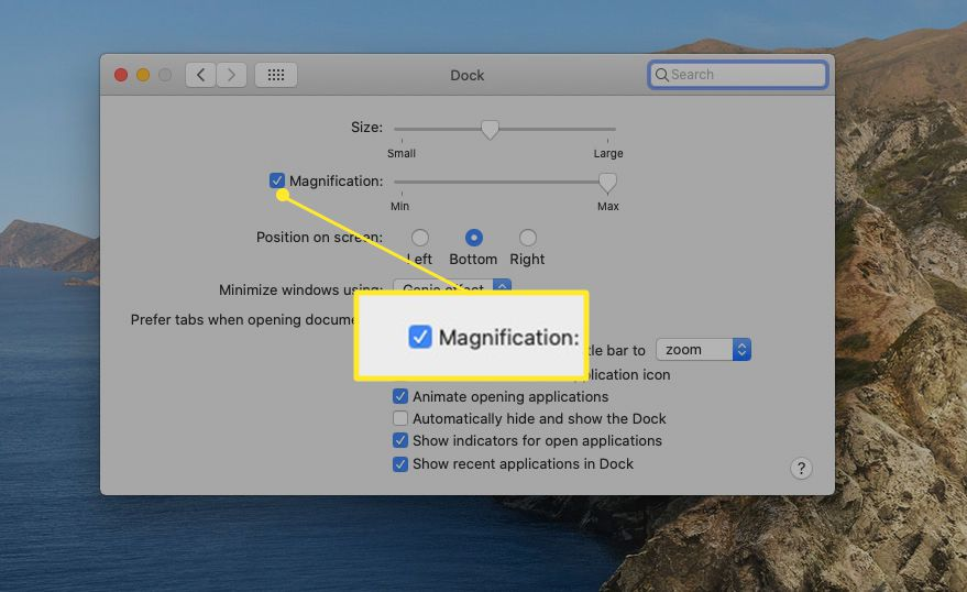Dock system preferences with Magnification highlighted