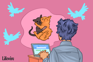 Illustration of someone downloading video of wrestling cats from Twitter