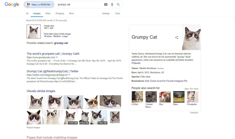 Screenshot of Google reverse image results