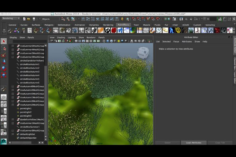 Creating Plants and Trees in Maya and Mental Ray Tutorial