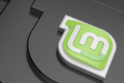 Image of the Linux Mint logo.