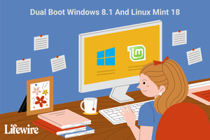 An illustration of a woman at a computer using a dual boot Windows and Linux Mint system.
