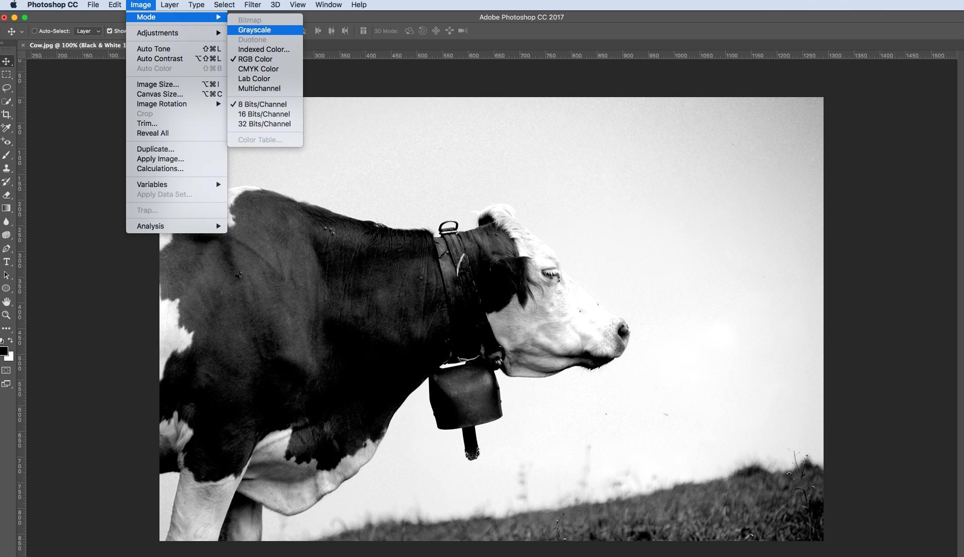 Create a Colonized Halftone Image in Photoshop CC 2017