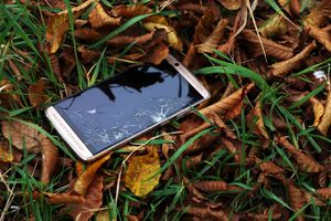 This photo shows a smartphone with a broken screen, lost in the woods.