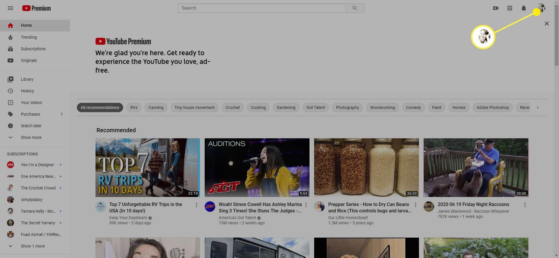 The Profile option in YouTube Premium.