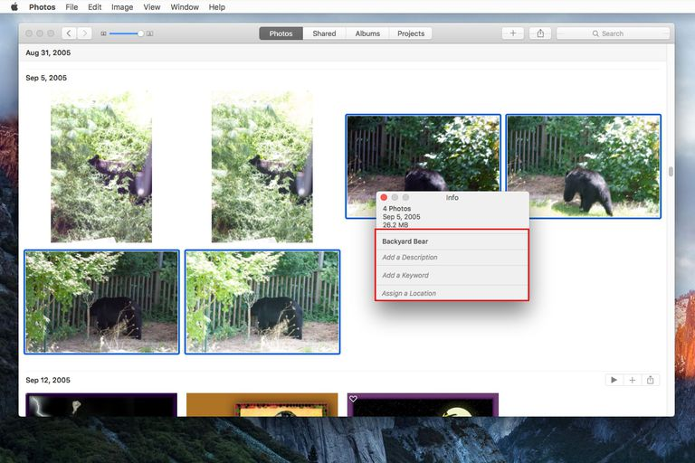 Photos app with Info window open to change image titles screenshot