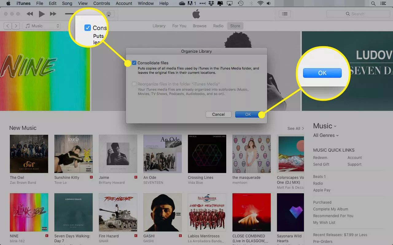 Organize Library window in iTunes with the