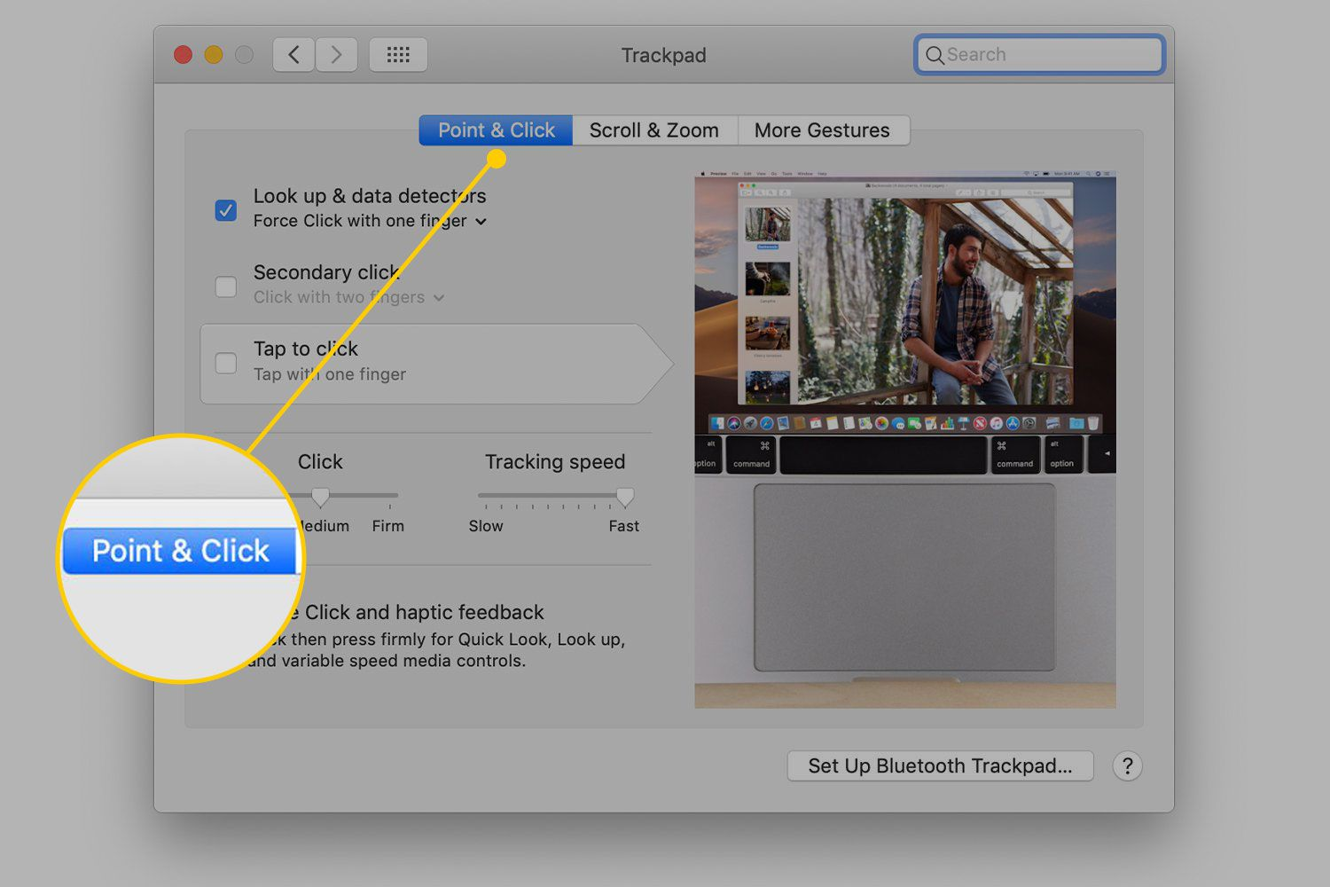 Point & Click tab in Trackpad settings on a Mac