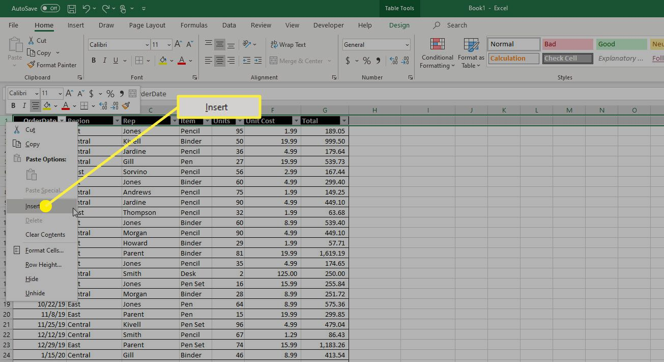 The Insert option in Microsoft Excel.