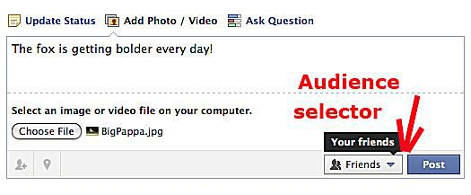 Facebook photo audience selector