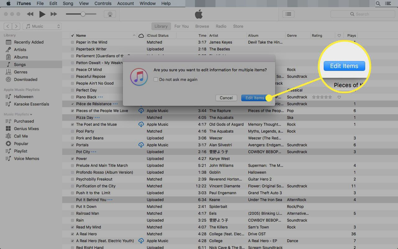 A dialogue box in iTunes with the Edit Items button highlighted