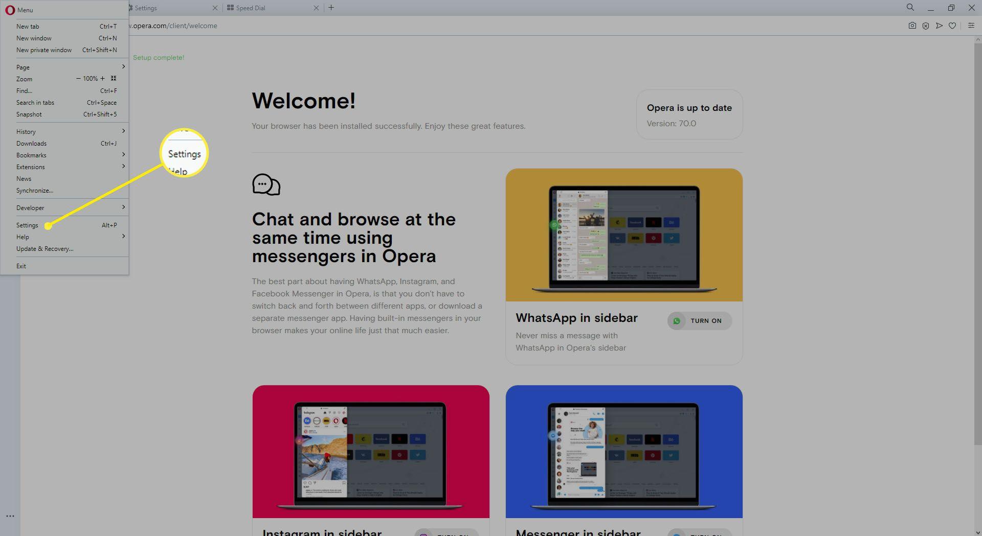 Settings submenu in Opera browser