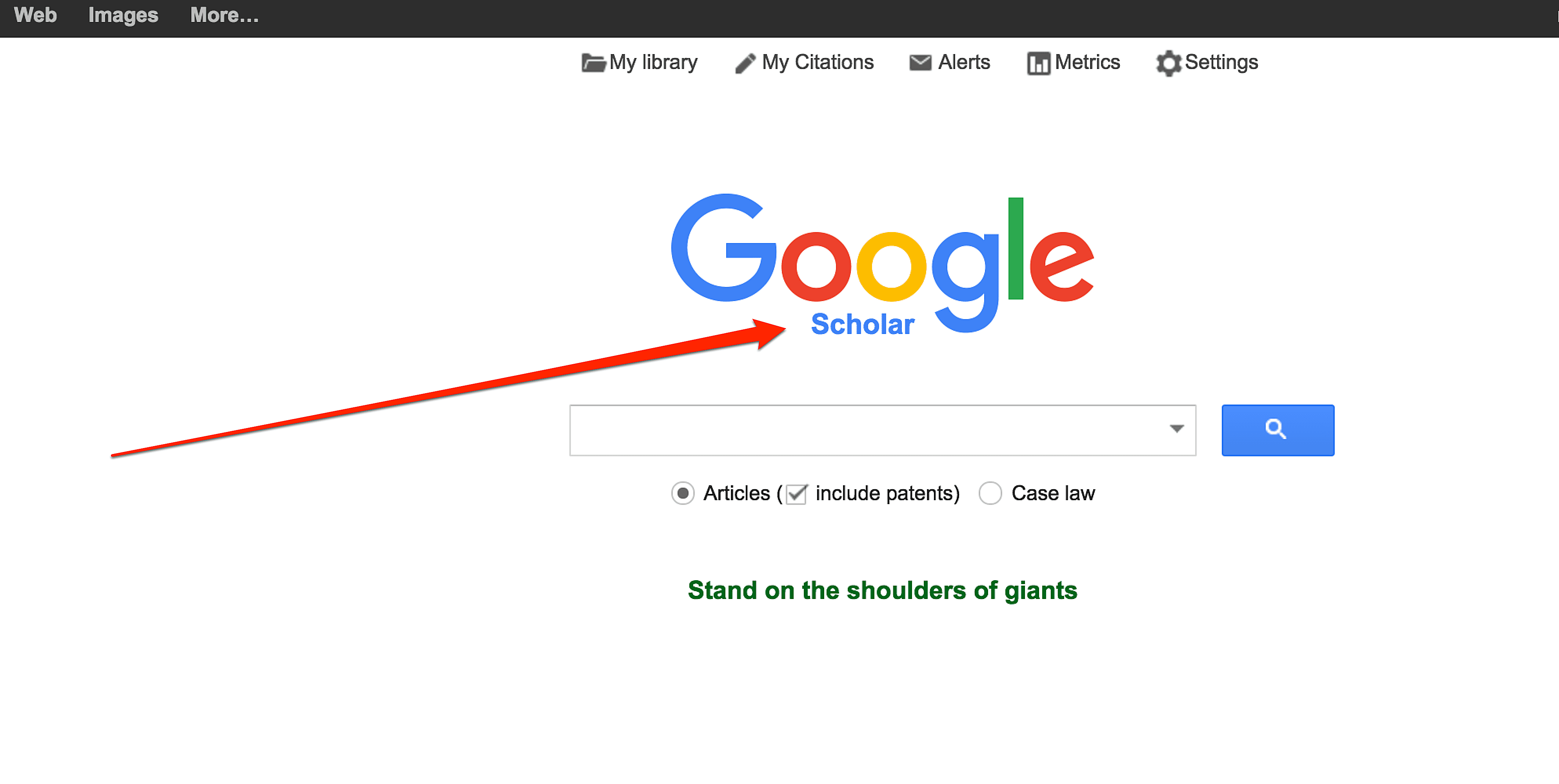 What Are Vertical Search Engines in Google?