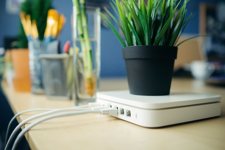 close up of a Router with a plant on top of it