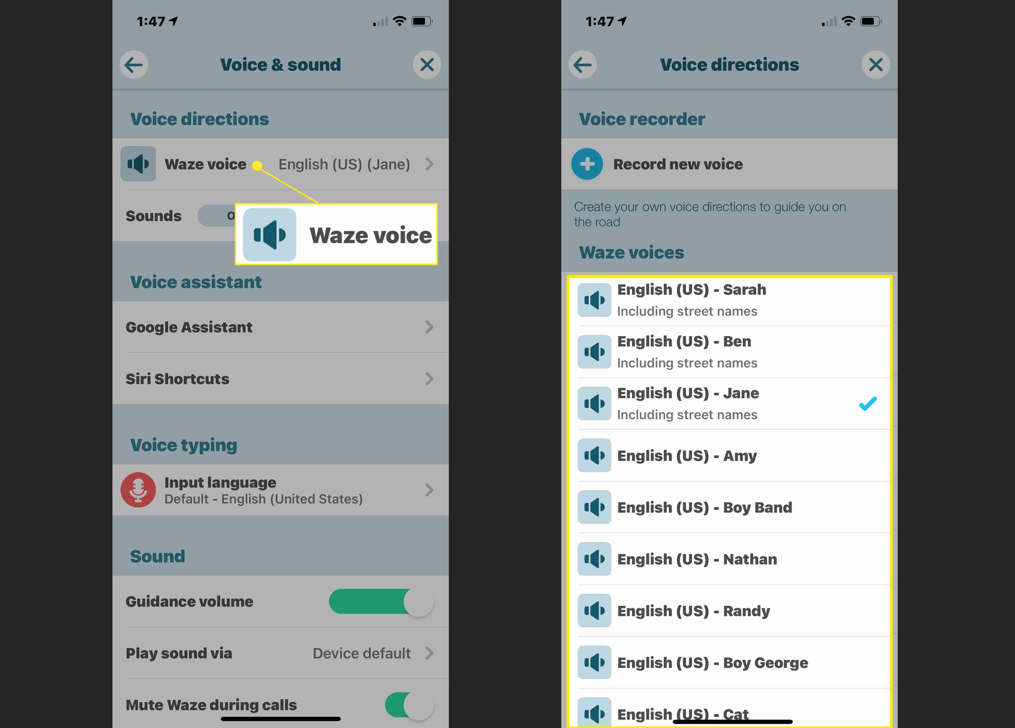 Waze voice choices