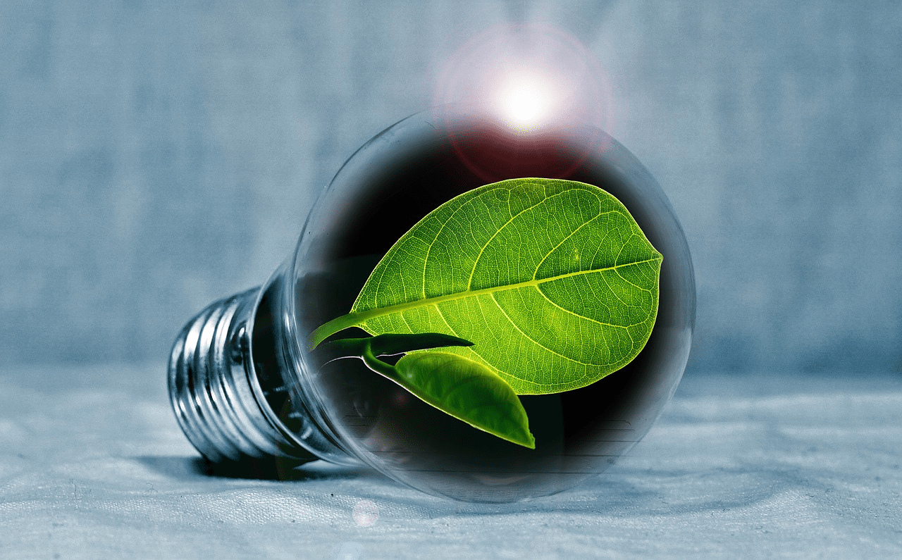 Image of an energy saving light bulb.