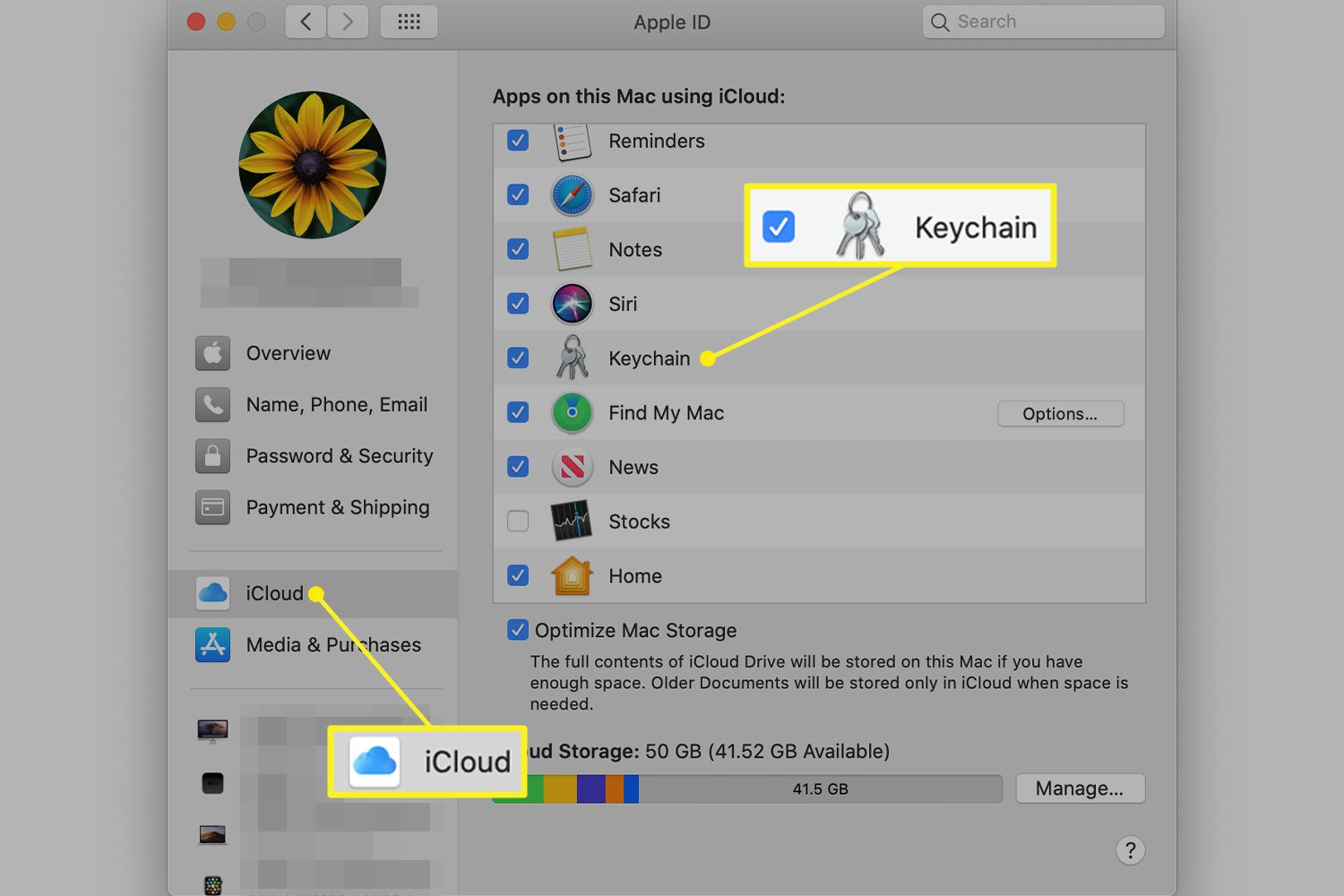 iCloud preferences with Keychain highlighted