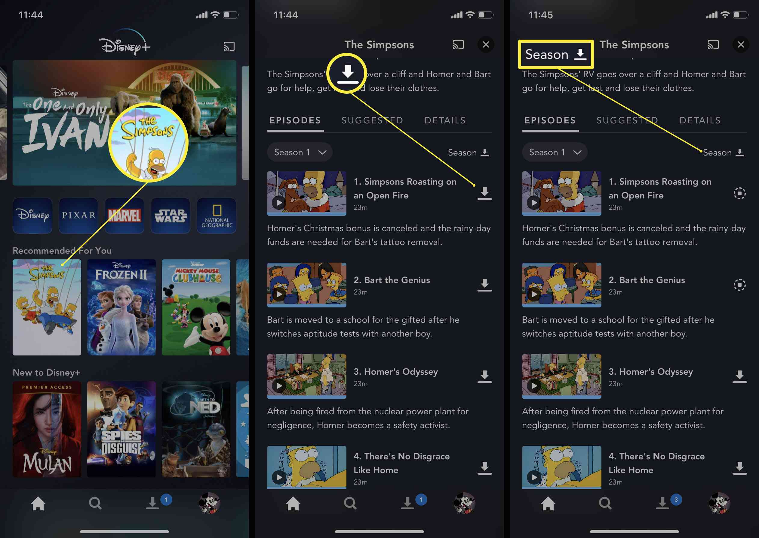 Steps needed in the Disney Plus app to download episodes or seasons of a TV show
