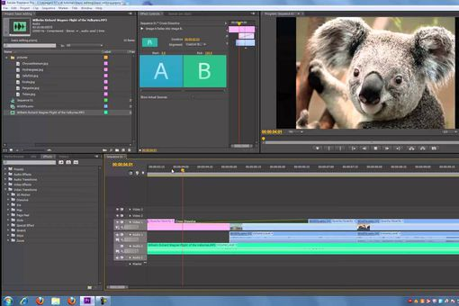 Premiere Pro CS6 screenshot