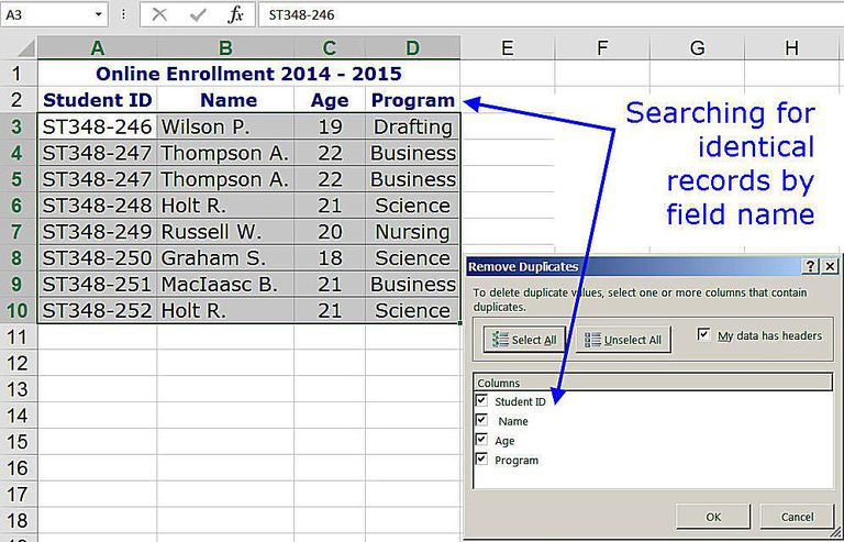Search for Identical Records by Field Name with Remove Duplicates in Excel