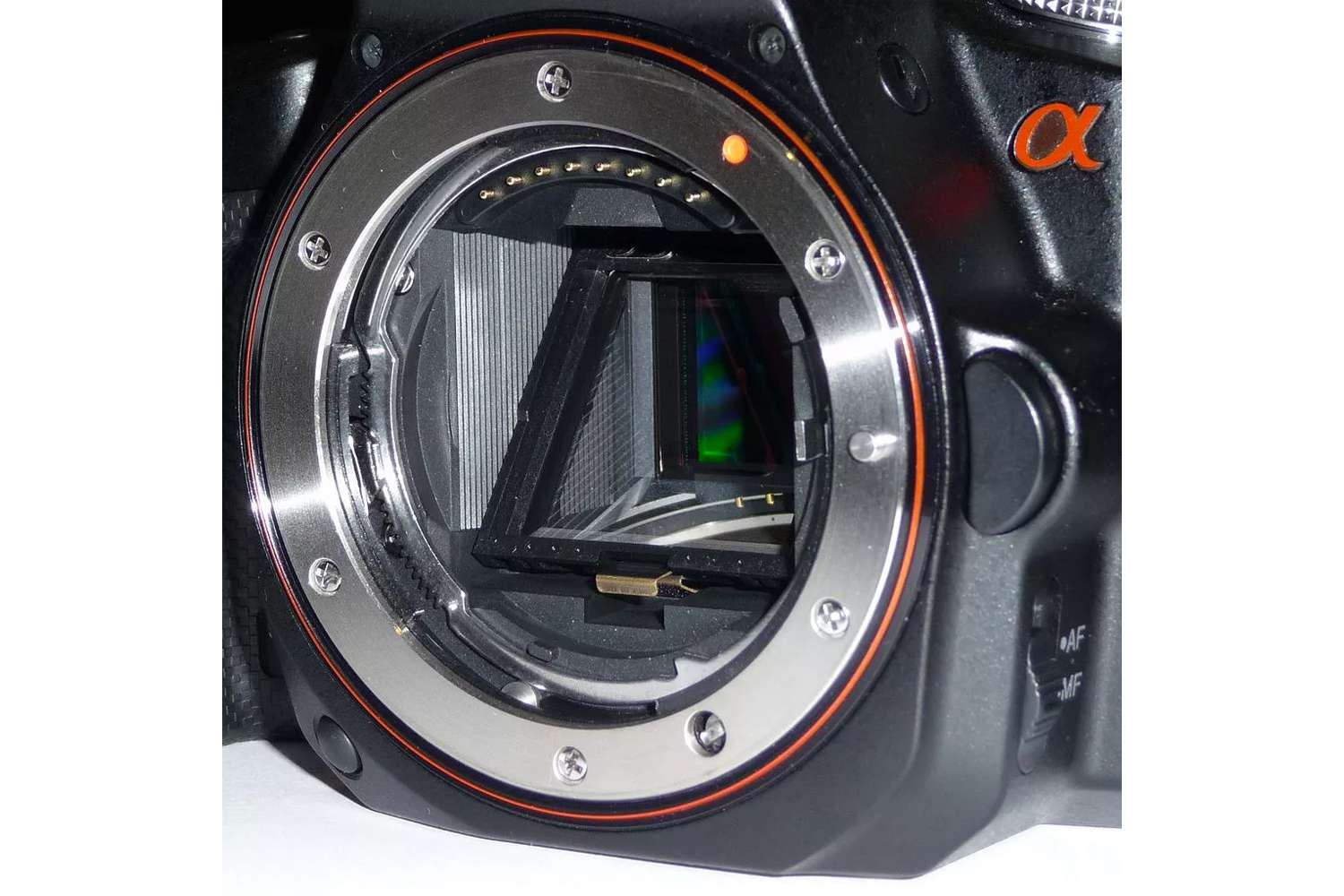 Camera body showing the mirror