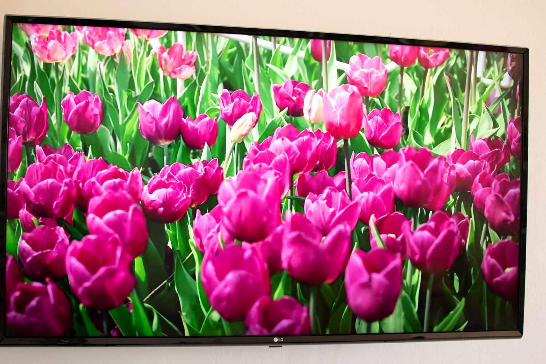 LG UM7300 49-inch 4K TV