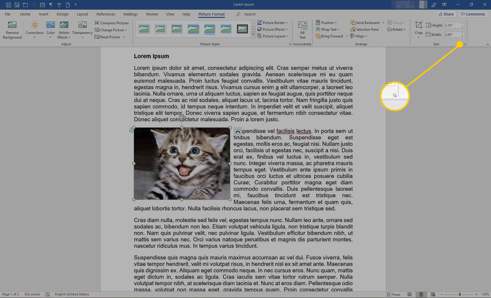 Size section in Word with the dialog box launcher button highlighted