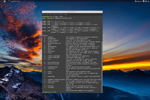 sudo command syntax