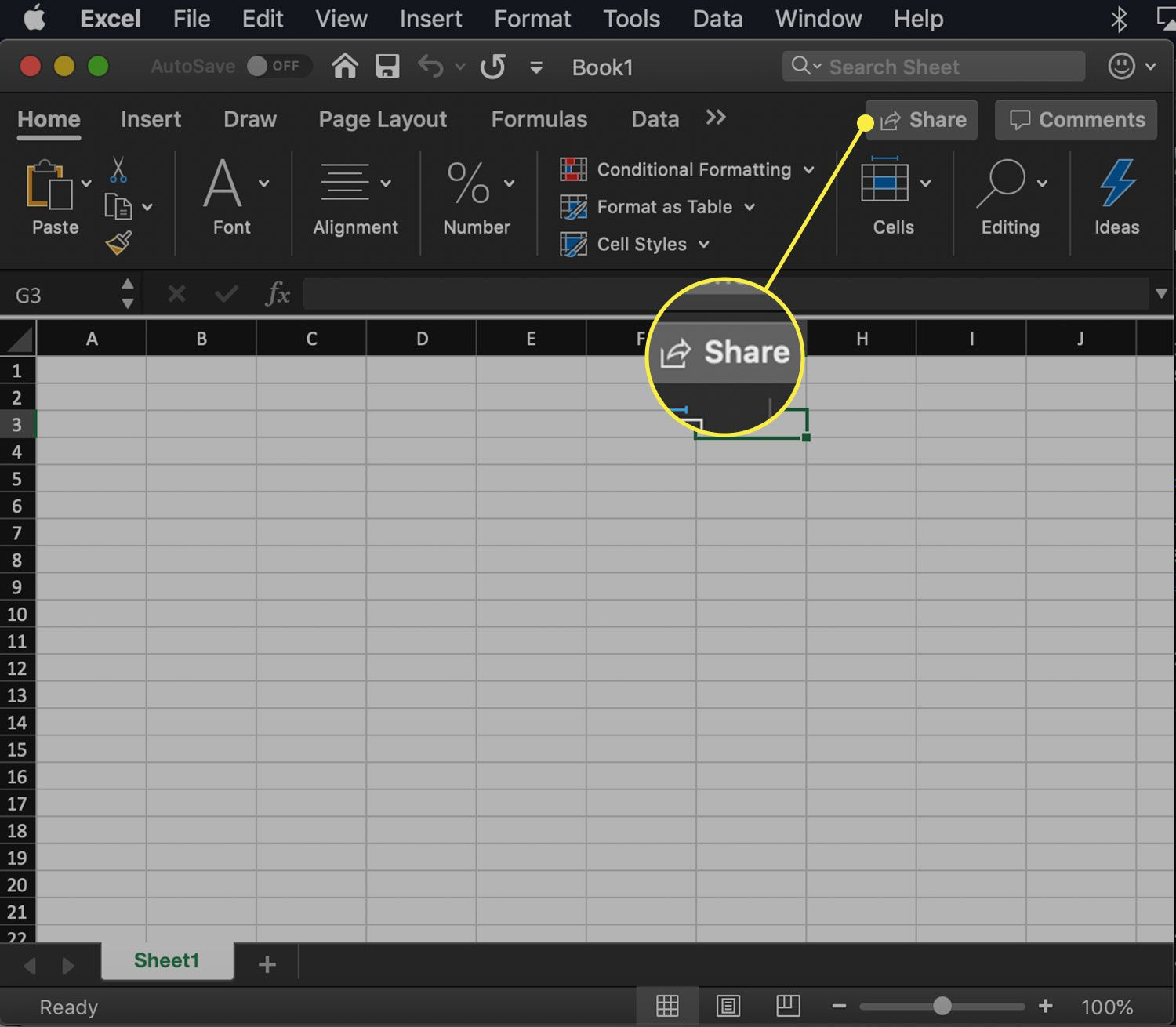 The Share button in Excel