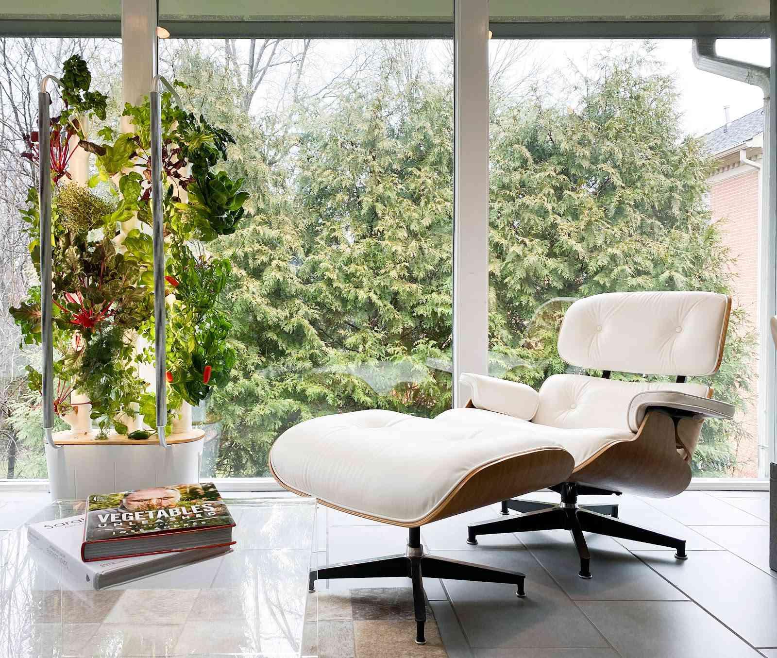 An indoor garden by Gardyn.