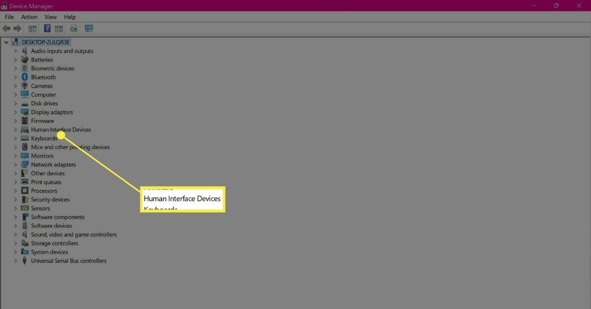 Human Interface Devices in Device Manager