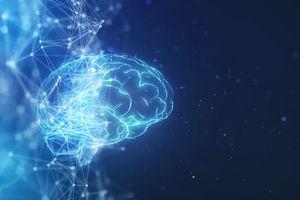 Illustration of a digital brain