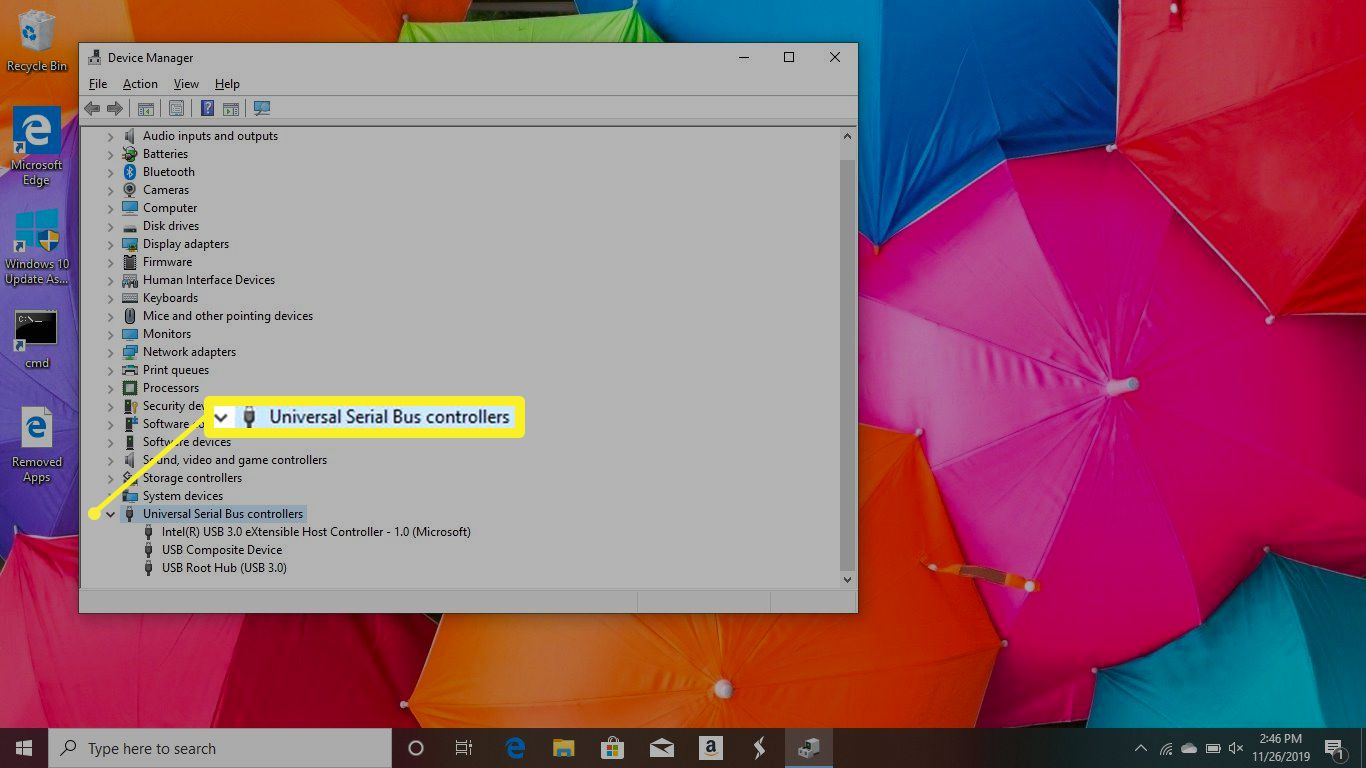USB Settings in Device Manager