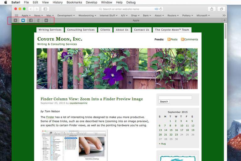 Screenshot of Safari with Pinned Web Sites