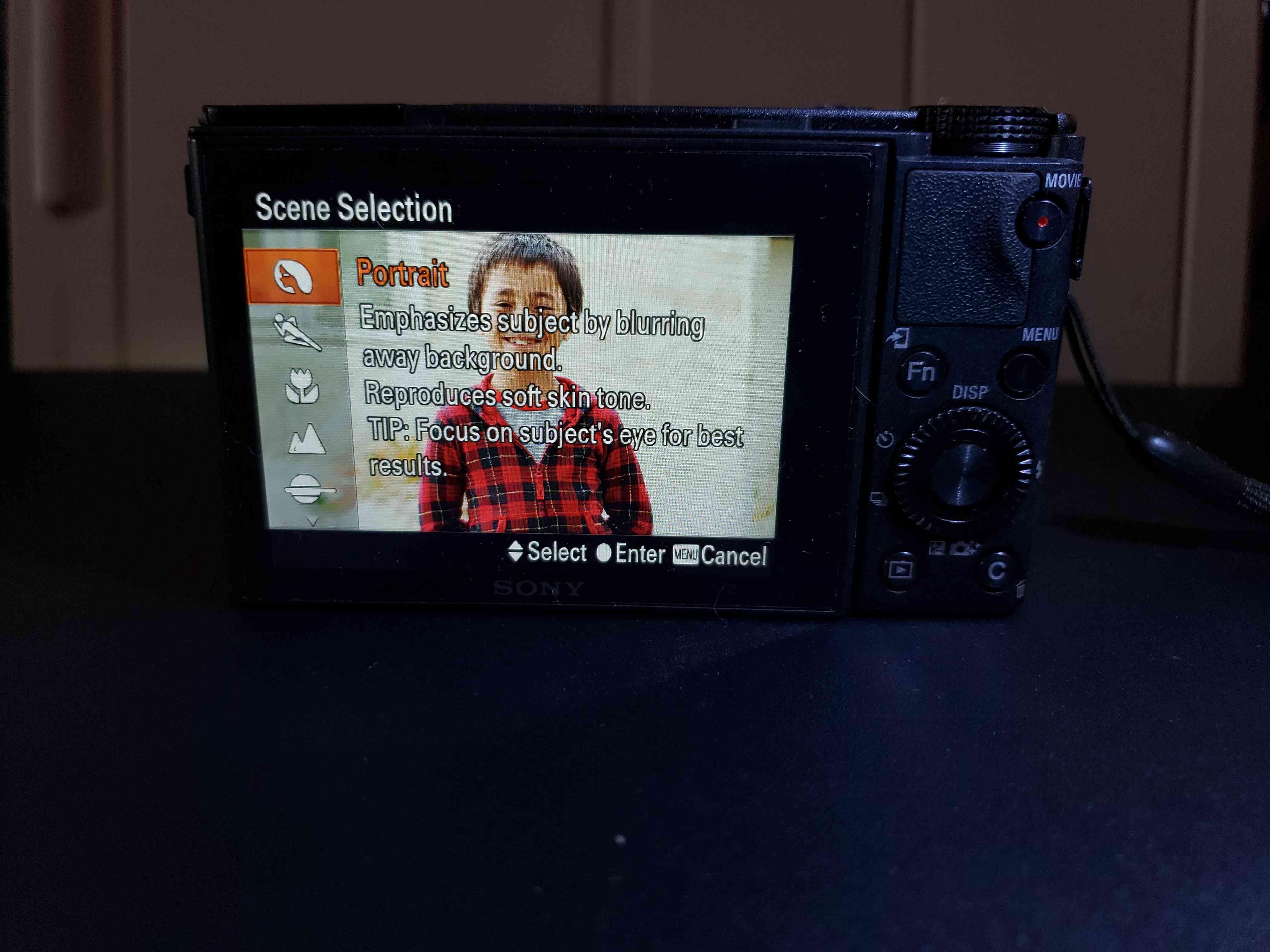 Scene mode on a DSLR camera.