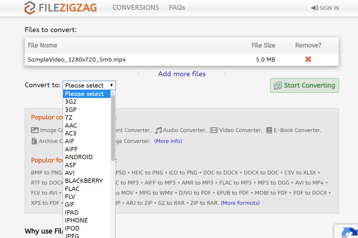 MP4 conversion at FileZigZag