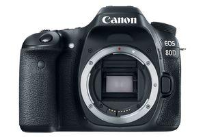 A canon EOS 80D DSLR camera with no lens