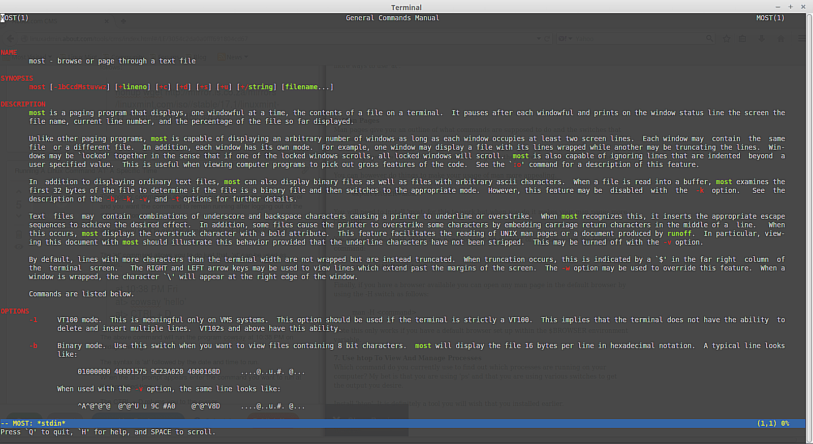 Colorful man pages in the Linux terminal