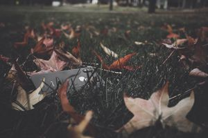 iPhone laying in the grass next to fall leaves.