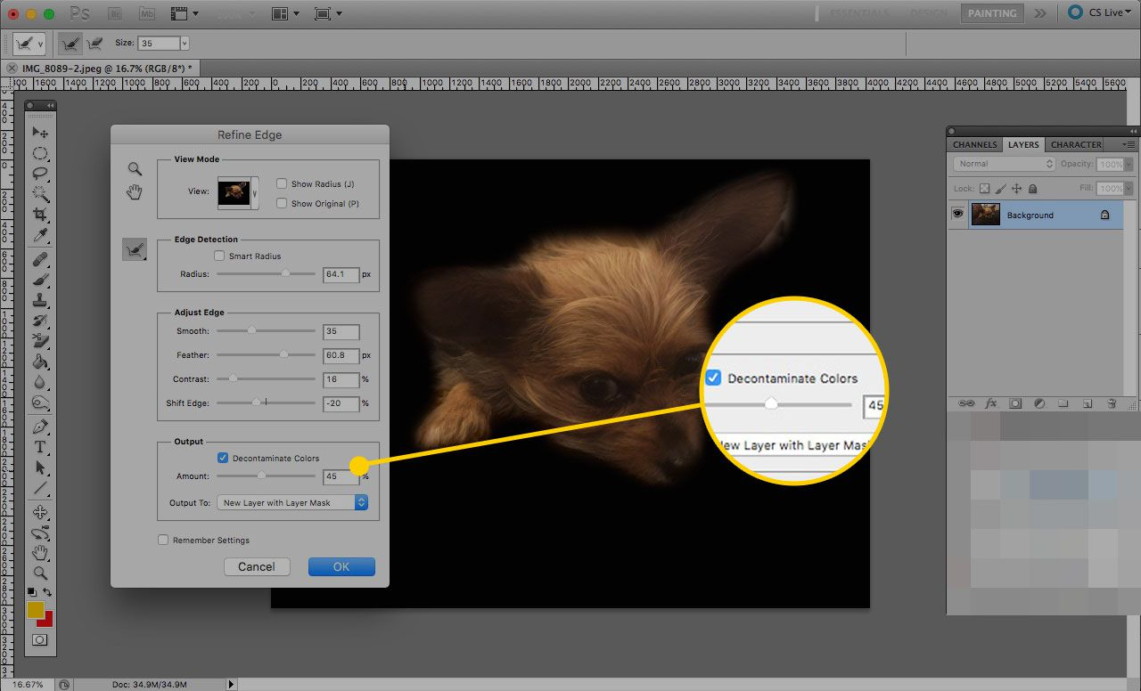 Refine Edge tool in Photoshop with the Decontaminate Colors check and slider highlighted