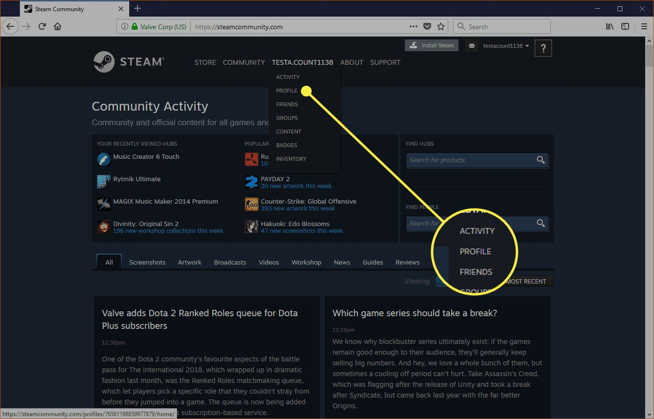 Steam with the Profile command highlighted