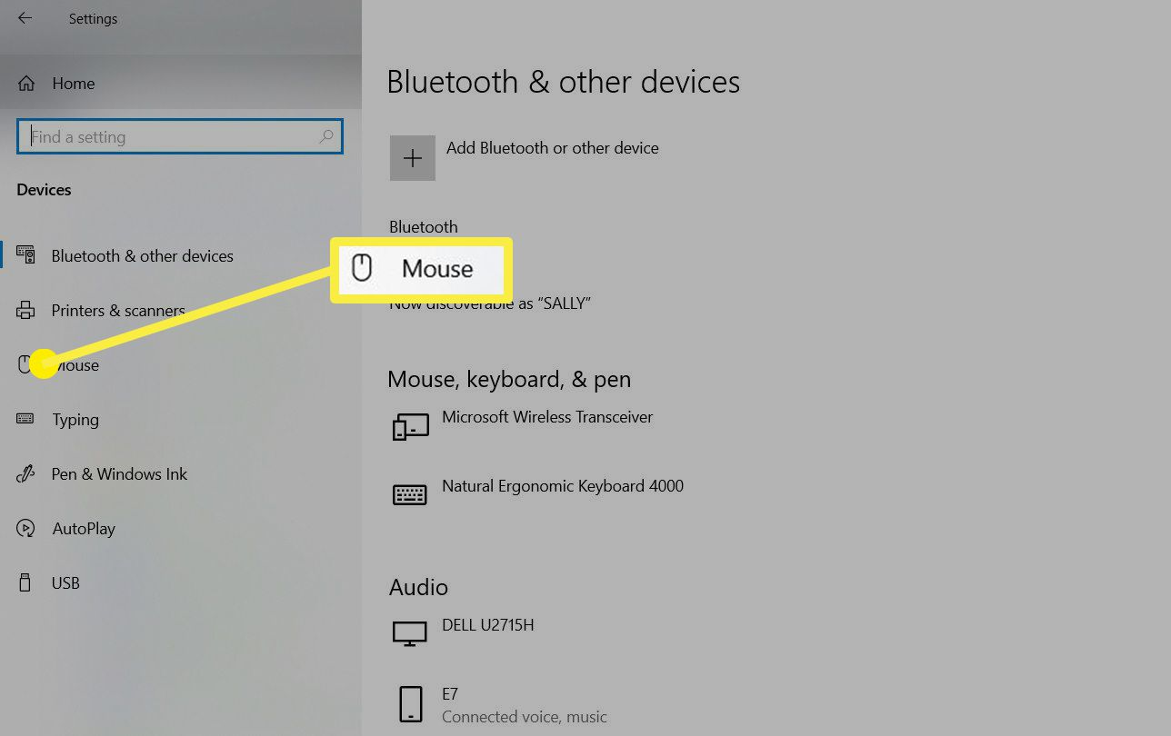 The Mouse option in the Bluetooth & other devices window.