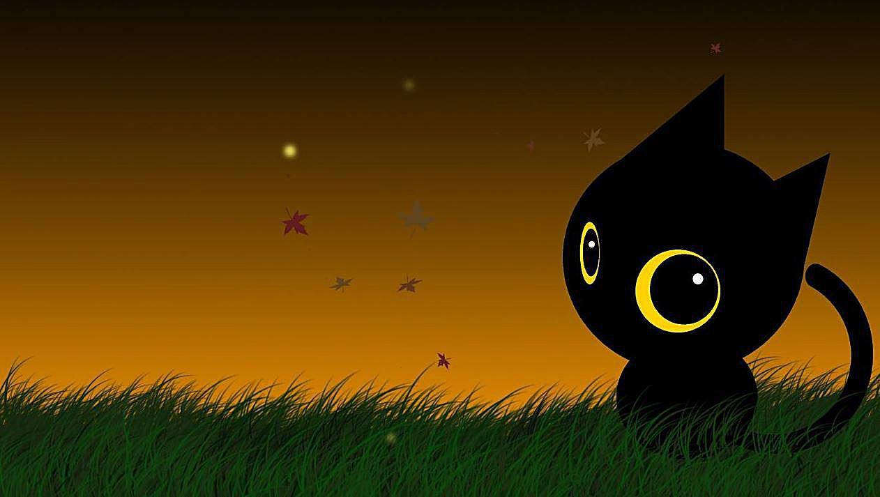 hallowcat halloween cat by iFreeWallpaper