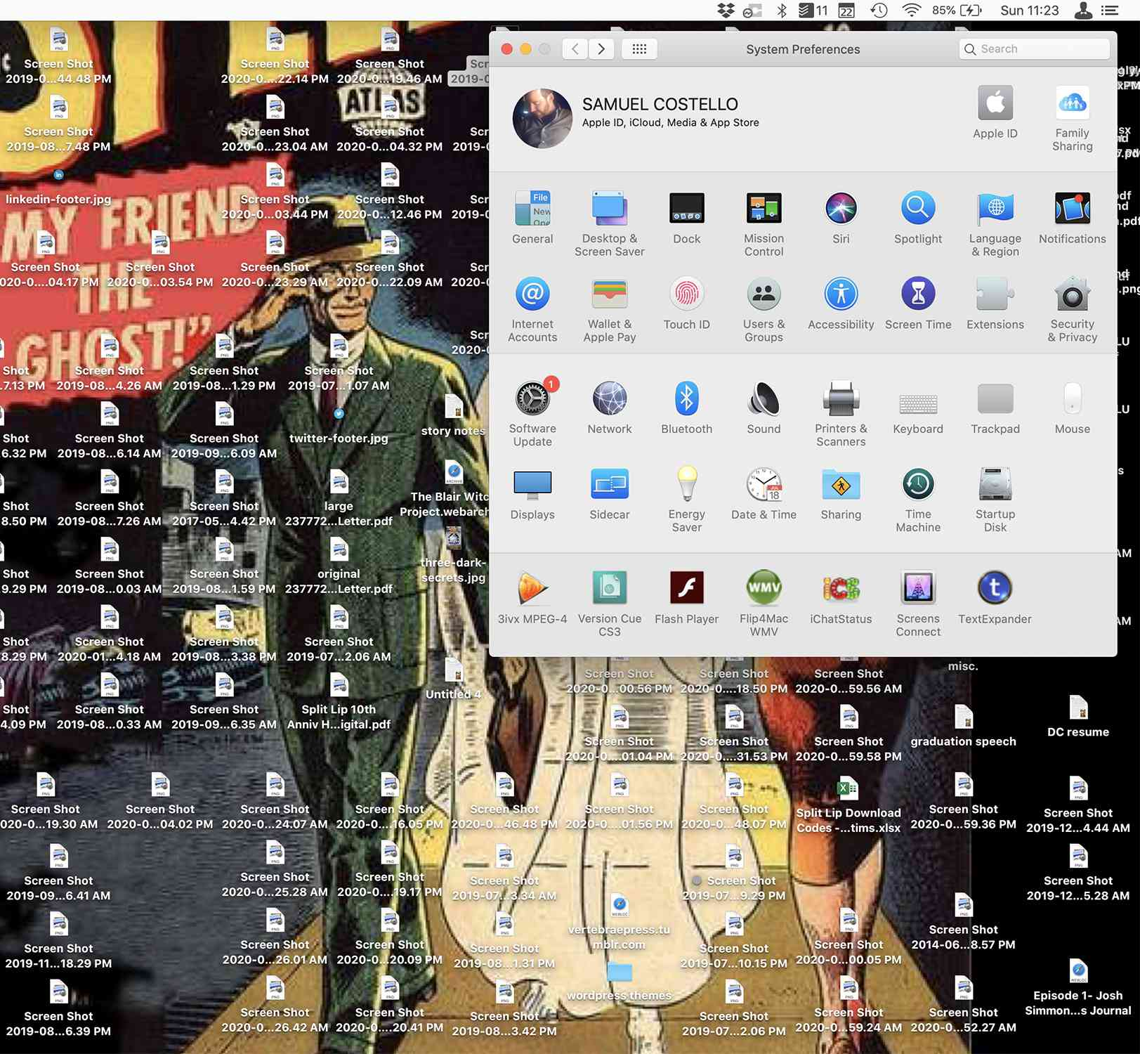 Screenshot of the Mac System Preferences window