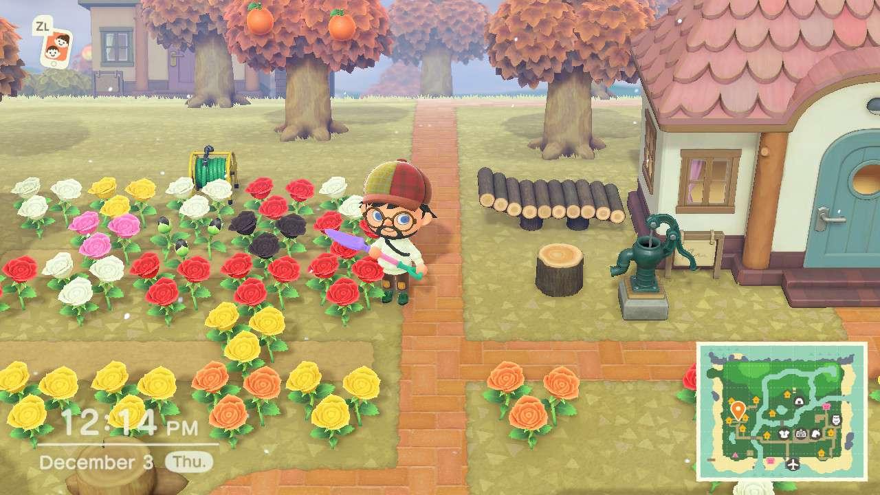 Animal Crossing character breeding flowers