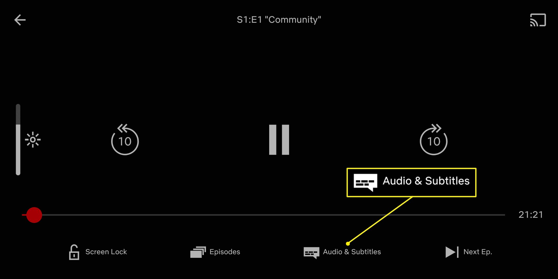 Netflix app with Audio & Subtitles highlighted