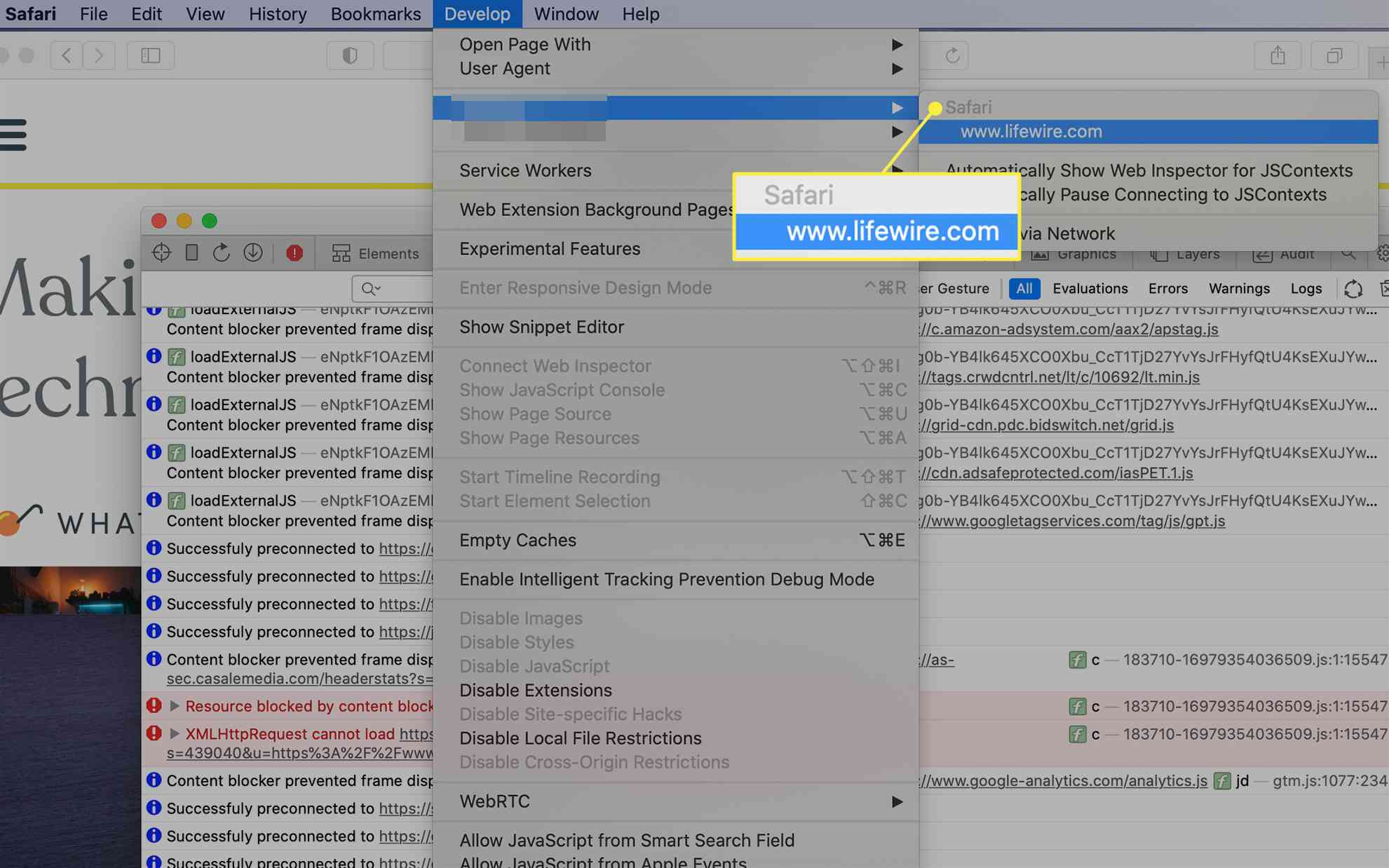 Safari mobile Web Inspector activated from the Develop menu on macOS