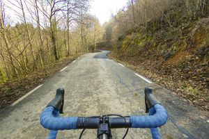 Solo cyclist with Blue Handlebars in Winter Forest
